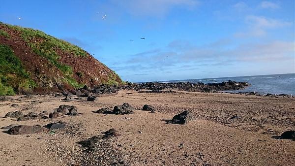 Прибрежный пейзаж острова