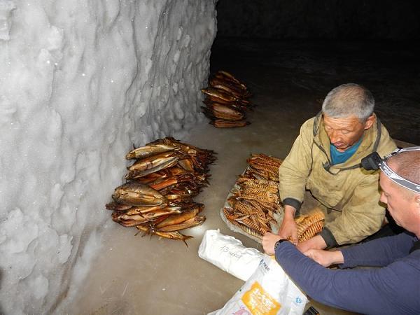 Ледник рыбучастка на о.Мархаяновский
