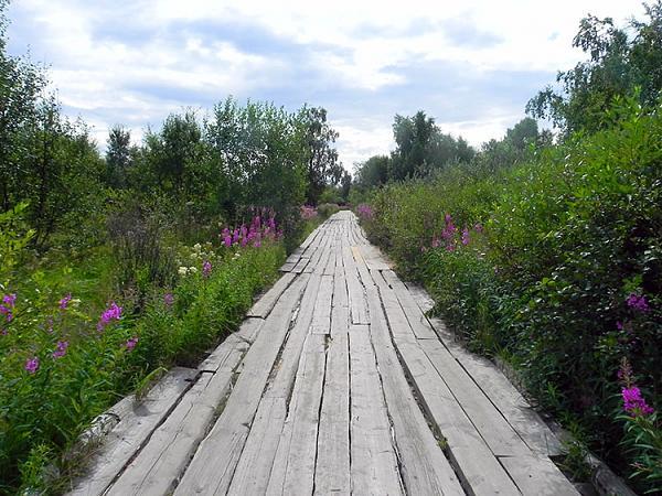 Дорога к Голгофо-Распятскому скиту