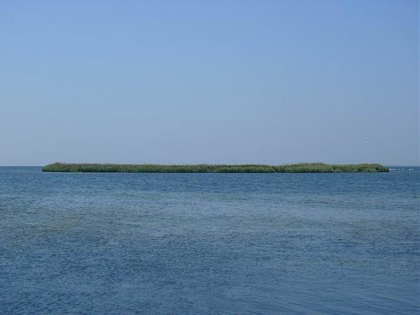 Остров Дзендзик 14.06.2012г.