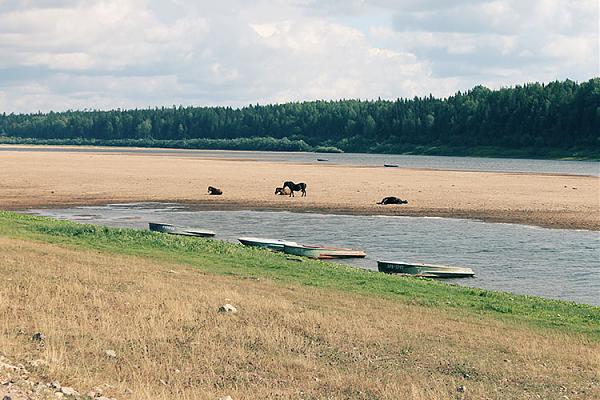 Вид на реку Пинега