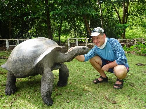 19-2 черепаха&ANR.JPG