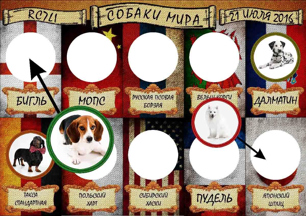 Наклейки Собаки мира условия получения радиолюбительского  Дипломная программа учреждена радиолюбителями