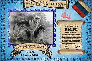Русская Псовая Борзая (Russian Hunting Sighthound)