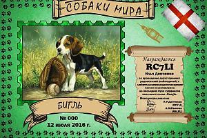 Бигль (Beagle)