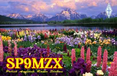 SP9MZX