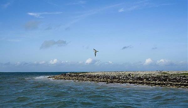 T32NH Остров Киритимати Кирибати