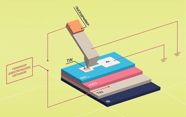 Экспериментальная установка, схема. Сверху — острая игла, при помощи которой физики определяли поляризацию сегнетоэлектрического материала; далее идёт «бутерброд» из проводника, изолятора, оксида гафния и снова проводника на кремниевой подложке: эти слои образуют плоский электрический конденсатор. Красные линии схематически показывают электрические проводники, подключённые к образцу. Дизайнер — Елена Хавина, пресс-служба МФТИ.