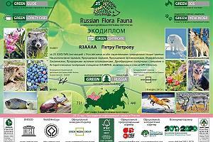 RFF NEW ONEs: расширение Национальной дипломной программы ООПТ России