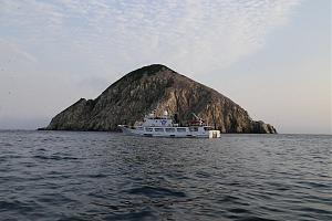 Экспедиция российско-японской группы ученых на остров Ионы, Охотское море, июль 2017