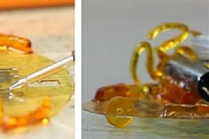Новая технология трехмерной печати позволяет производить электронные схемы с высокой скоростью