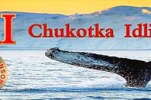 RT65KI – экспедиция на остров Идлидля, Чукотка – IOTA AS-065