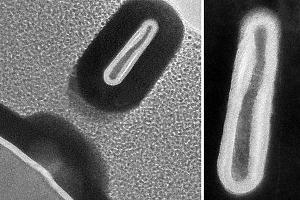Созданы самые миниатюрные транзисторы размером 2,5нм