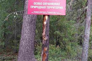 """Активация  RFF-233 природный парк """"Нумто"""" NEW ONE 19-20 июня 2019"""