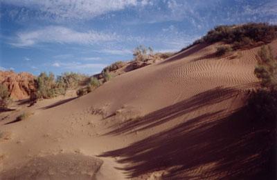 Песчанные барханы пустыни Гоби