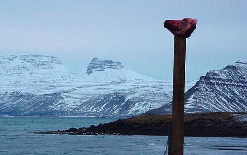 Воззвание к богам, или символ проклятия древних викингов.