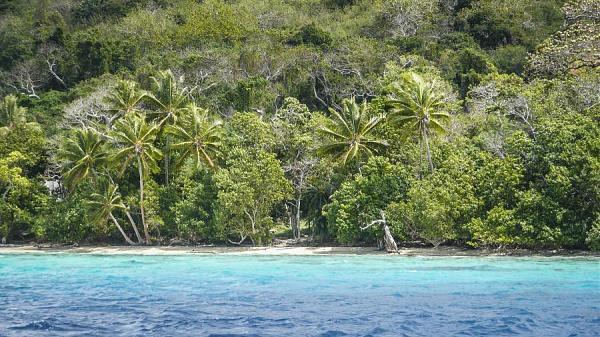 Остров Эфате Вануату YJ0YM Остров Мосо