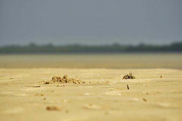 Остров Мафия, Танзания 5H3CA 5H3RRC