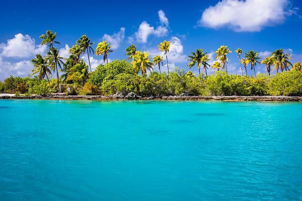 FO/JI1JKW Атолл Факарава, Архипелаг Туамоту, Французская Полинезия
