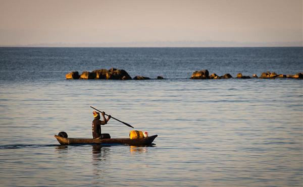 7Q7ELA Голубая Зебра, остров Нанкома, Малави.