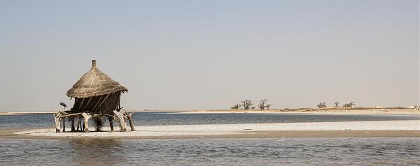6W/IK5BSC Сенегал