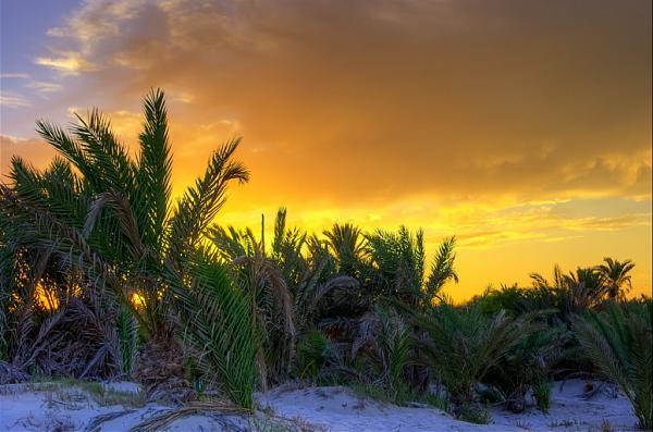 3V8CQ Закат, остров Джерба, Тунис.