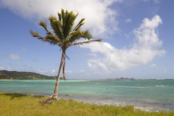 J8NY Остров Сент Винсент, Сент Винсент и Гренадины.