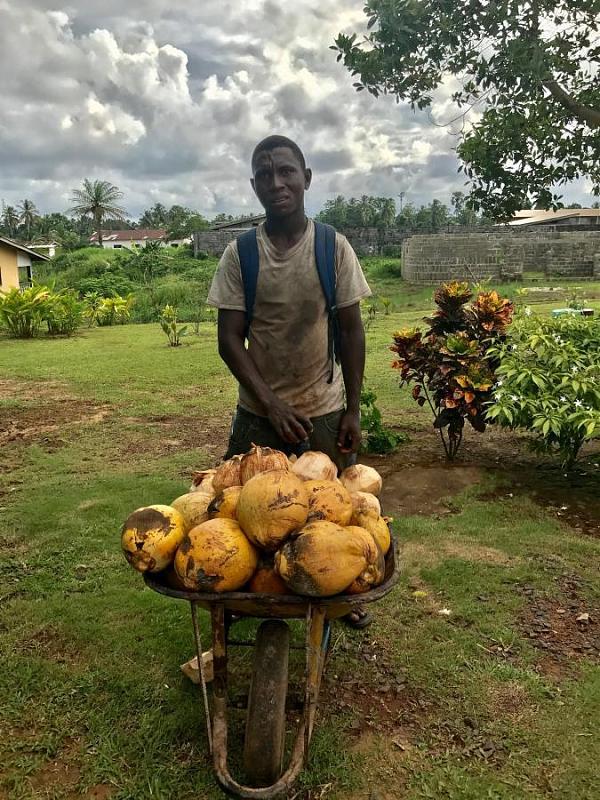 EL2EL Продавец кокосов, Бучанан, Гранд Басса, Либерия.