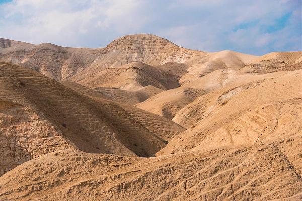 E44C Палестина