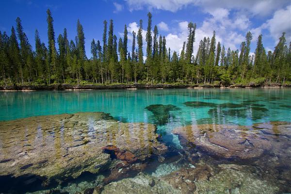 Новая Каледония FK/5B4ALX Природный аквариум Остров Пайн